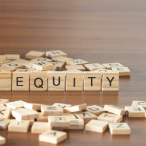 bringing the pieces together for equity in the healthcare system